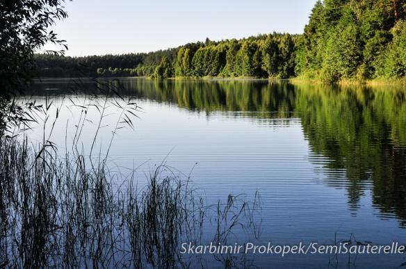 Mazuriee, Pologne, août 2013